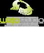 WIZJOSTUDIO - Projektowanie stron internetowych